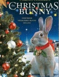 圣诞兔子(2010)