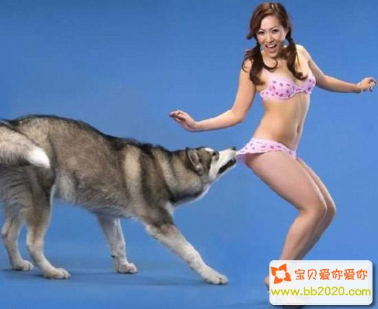 动物也好色 妹子被挑逗尴尬瞬间图片第1张