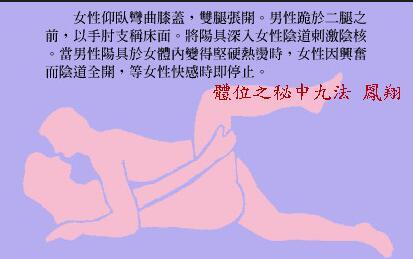 体位之秘中九法:凤翔_素女经房中九术(全部图片)配文第6张