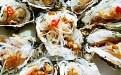 生蚝的营养价值及功效与作用